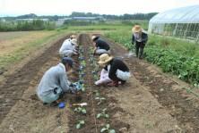 農業未来塾 (3)